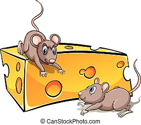 Slice of cheese with rats on a white background