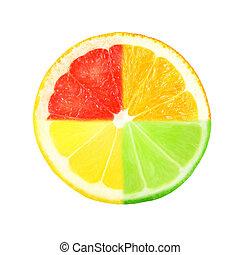 citrus  - slice of citrus on white background