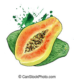Slice of Papaya Fruit or Pawpaw, Papaw - Sliced Papaya on...