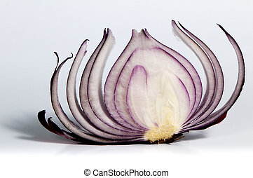 Slice of red onion - A shot of the slice of red onion.