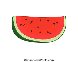 Slice of ripe watermelon. Vector illustration on white background.