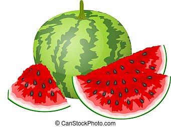 Slice of watermelon. Vector Illustration