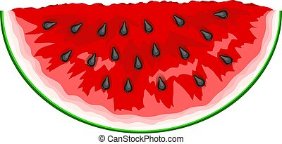 Slice of watermelon. Vector Illustration