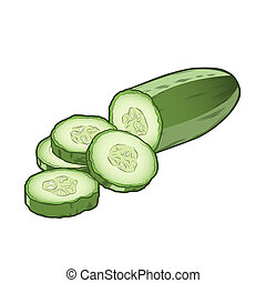 Sliced cucumber isolated on a white background. Color line art. Retro design. Vector illustration.