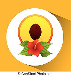 sliced peach fruit flower and leaves palm vector...