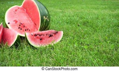 sliced watermelon on grass - sliced watermelon on green...