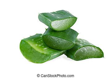 Slices of aloe vera plant