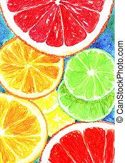 slices of lemon, orange and grapefruit watercolor pattern background