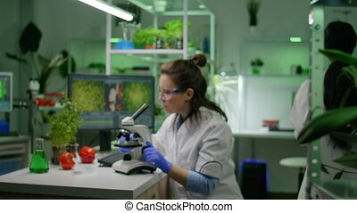 Slide view of chemist researcher analyzing gmo green leaf under medical microscope observing genetic mutation. Biologist scientist examining organic agriculture plants in microbiology scientific lab