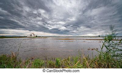 Sliding camera towards flooded rice field in Albufera