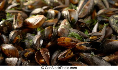 Sliding over sea mussels cooked with herbs - Sea mussels...