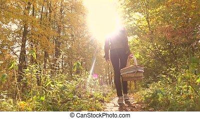 Slim brunette girl walking in autumn forest holding a picnic basket. 4K steadicam shot