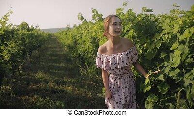 Slim girl in the summer sundress in vineyards ranks - Slim...