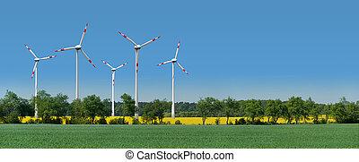 slingra turbiner, in, a, rapsfrö, fält