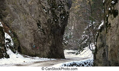 slippery road at the rocky canyon of park Piatra Craiului