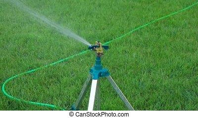 Slomo head of garden sprinkler working copy space on grass -...