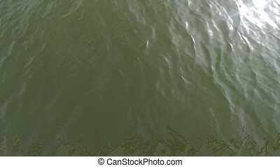 Slomo of green water surface top view. Sparkling water sun...