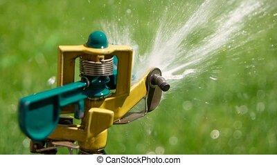 Slomo Yard grass sprinkler head - Yard grass sprinkler head...