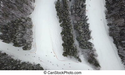 Slope for lowering skiers and snowboarders in the ski resort, top view