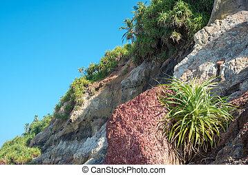 Slope of the mountain on the coast Varkala, India