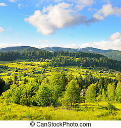 Slopes of mountains, coniferous trees and clouds in evening sky.