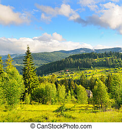 Slopes of mountains, coniferous trees and clouds in the evening sky. Picturesque and gorgeous scene. Location place Carpathian, Ukraine, Europe.