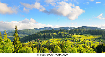 Slopes of mountains, coniferous trees and clouds in the evening sky. Wide photo .