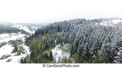 Slopes wooded hills strewn with snow. Aerial view