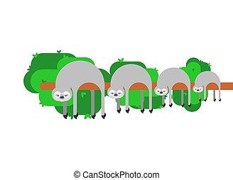 Sloth family. lazybones animal Cartoon. Vector illustration