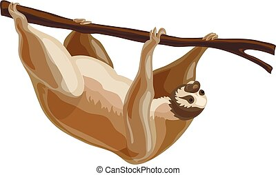 Sloth icon, cartoon style