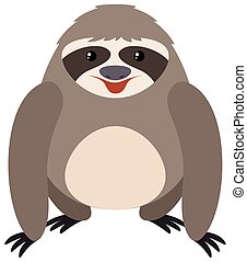 Sloth on white background