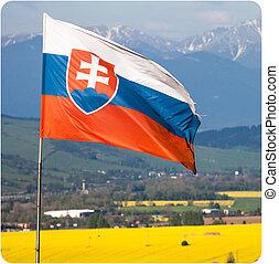 Slovak national flag in wind