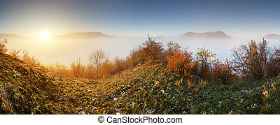 Slovakia forest autumn panorana landscape with mist in mountain, Manin