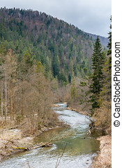 Slovakia paradise: the river canyon in slovakia national forest park