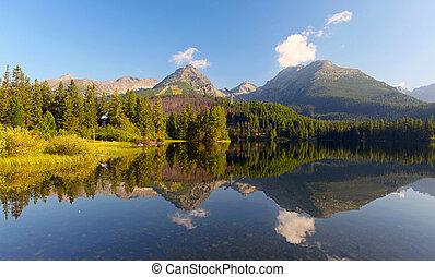 slovaquie, lac montagne, dans, tatra, -, strbske, pleso