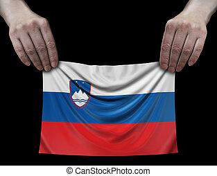 Slovene flag in hands