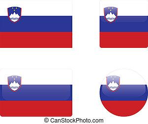 Slovenia flag & buttons