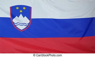 Slovenia Flag real fabric close 4K - Textile flag of...