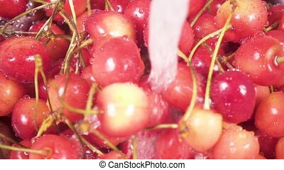 Slow motion cherry in colander under water - Slow motion in...
