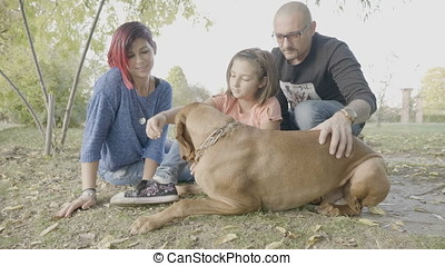 Family of three in the park playing with their dog - Slow...