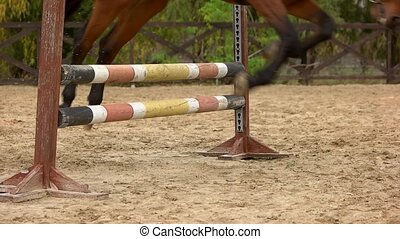 Slow motion horse jumping over hurdle. Close up horse with...
