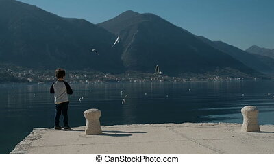 Slow motion little boy standing on pier, throwing rocks into lake water