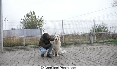 Slow motion of a white beautiful dog receiving treats from...