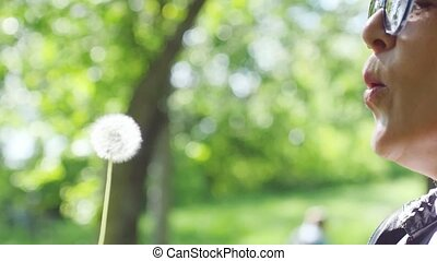 Slow motion of dandelion being blown by beautiful mature...