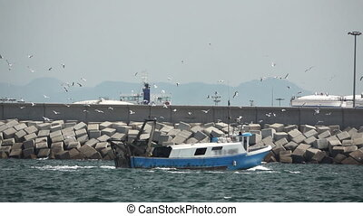 Slow motion of fishing boat arriving to port with seagulls -...
