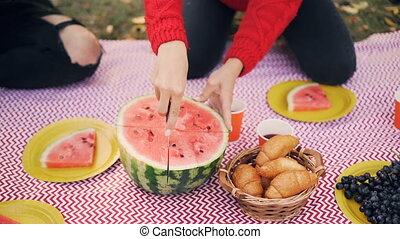 Slow motion of people on a picnic, female hand is cutting...