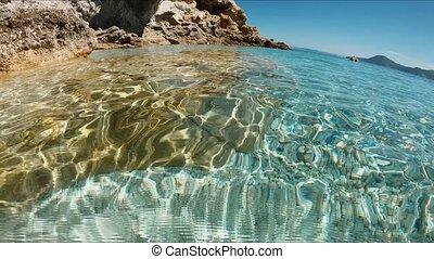 Slow motion of underwater marine life.
