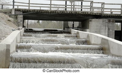 Slow motion of water on a fish ladder