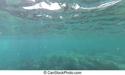 Slow motion of water surface, underwater shot in the sunny...