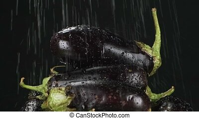 Slow motion. Raindrops fall on a pile of eggplant. Vegetables pyramid. Black background.